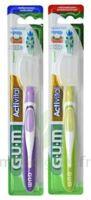 Gum Activital, Médium à DURMENACH