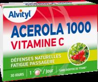 Govital Acerola 1000 à DURMENACH