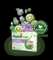 Phytoxil Transit Comprimés B/20 à DURMENACH
