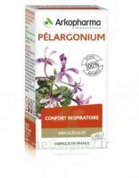 Arkogélules Pélargonium Gélules Fl/45 à DURMENACH