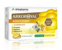 Arkoroyal Propolis Pastilles adoucissante gorge guimauve miel citron B/24 à DURMENACH