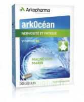 Arkocean Magnesium Marin Vitamine B6 Gélules Nervosité Fatigue B/30 à DURMENACH