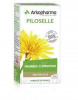 Arkogélules Piloselle Gélules Fl/45 à DURMENACH