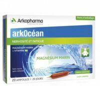 Arkocean Magnesium Marin Solution Buvable Caramel 20 Ampoules/10ml à DURMENACH