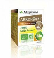 Arkoroyal 100% Gelée Royale Bio Gelée Pot/40g à DURMENACH