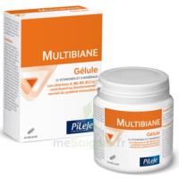 Pileje Multibiane 30 Gélules à DURMENACH