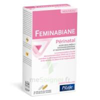 Pileje Feminabiane Périnatal 28 Gélules Blanches Et 28 Gélules Jaunes à DURMENACH