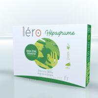 Léro Hepagrume Solution buvable complément alimentaire 20 Ampoules/10ml à DURMENACH