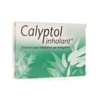 CALYPTOL INHALANT, émulsion pour inhalation par fumigation à DURMENACH