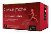 Santé Verte Circulymphe Triple Actions B/30 à DURMENACH