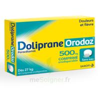DOLIPRANEORODOZ 500 mg, comprimé orodispersible à DURMENACH