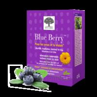 Blue Berry Comprimés Visée Oculaire B/120 à DURMENACH