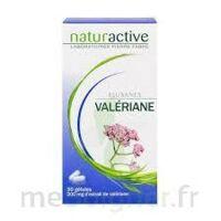 Elusanes Valeriane 200 Mg, Gélule Pilul/30 à DURMENACH