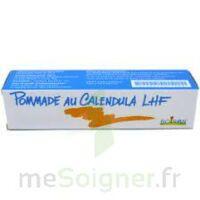CALENDULA LHF POM T/20G à DURMENACH