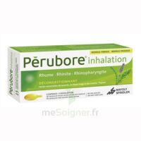 PERUBORE Caps inhalation par vapeur inhalation Plq/15 à DURMENACH