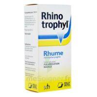 RHINOTROPHYL Solution pour pulvérisation nasale 1Fl/12ml à DURMENACH