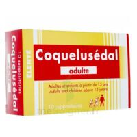 COQUELUSEDAL ADULTES, suppositoire à DURMENACH