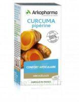 Arkogelules Curcuma Pipérine Gélules Fl/45 à DURMENACH