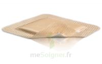 Mepilex Border Pansement hydrocellulaire stérile 10x30cm B/10 à DURMENACH