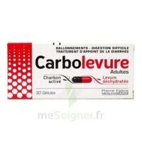 Carbolevure Gélules Adulte Plq/30 à DURMENACH