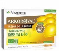 Arkoroyal Gelée royale bio 1500 mg Solution buvable 20 Ampoules/10ml à DURMENACH