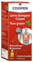 Lierre Grimpant Cooper édulcoré Au Maltitol Liquide Solution Buvable Sans Sucre F/100ml à DURMENACH