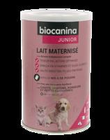 Biocanina Lait Poudre Maternisé B/400g à DURMENACH