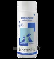 Biocanina Shampooing éclat Pelage Blanc 200ml à DURMENACH