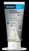 Biocanina Shampooing éclat Poils Blancs 200ml à DURMENACH