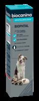 Biophtal Solution Externe 125ml à DURMENACH