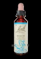 Fleurs De Bach® Original Beech - 20 Ml à DURMENACH