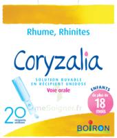 Boiron Coryzalia Solution buvable unidose B/20 à DURMENACH