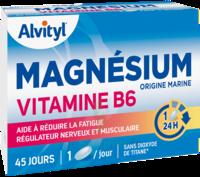 Govital Magnésium Vitamine B6 Comprimés B/45 à DURMENACH