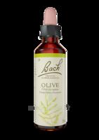 Fleurs De Bach® Original Olive - 20 Ml à DURMENACH