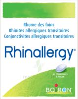 Boiron Rhinallergy Comprimés B/40 à DURMENACH