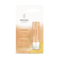Weleda Soin Des Lèvres Everon® 4,8ml à DURMENACH