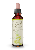 Fleurs De Bach® Original Wild Rose - 20 Ml à DURMENACH