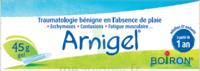 Boiron Arnigel Gel T/45g à DURMENACH